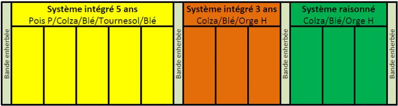 Schéma de la plateforme d'expérimentation Ecophyto 2018 à Haroué